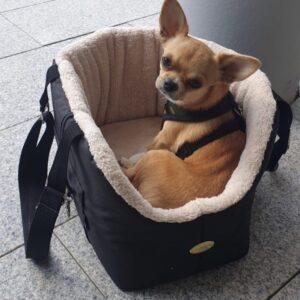 Hundetaschen