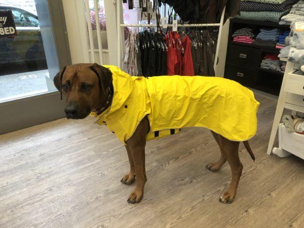 Hunderegenmantel Rukka