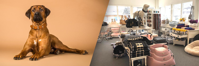 Besuchen Sie unsere Hundeboutique